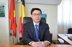 Vietnam-Belgique: Porter les relations bilatérales à une nouvelle hauteur