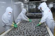 Le Vietnam est déterminé au développement durable des produits aquatiques