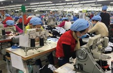 Vietnam-Mali: renforcement de la coopération économique et commerciale