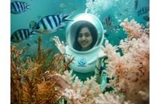 Service de plongée sous-marine à Phu Quôc