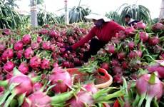1er trimestre: hausse spectaculaire des exportations nationales vers la Chine