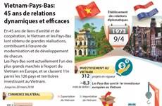 Vietnam-Pays-Bas: 45 ans de relations dynamiques et efficaces