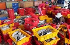 Le Vietnam oeuvre pour une pêche durable et responsable
