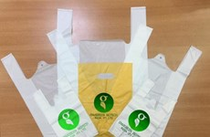 Des sacs en plastique fabriqués à partir de manioc