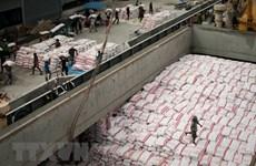 La Thaïlande, premier exportateur mondial de riz au premier trimestre