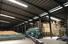 Le Vietnam exportera 50.000 tonnes de riz Japonica en République de Corée