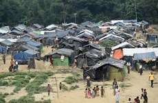 L'ONU et le Myanmar signent un accord concernant les Rohingyas