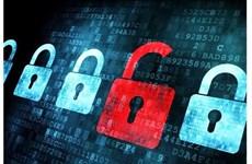 L'utilisation de logiciels sans licence baisse de 4% au Vietnam