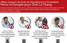 Affaire d'apport de fonds de PVN à OCB: Peine confoirmée pour Dinh La Thang