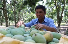 Le Vietnam exhorte les entreprises suisses à investir dans l'agriculture