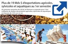 Plus de 19 Mds $ d'exportations agricoles, sylvicoles et aquatiques au 1er semestre