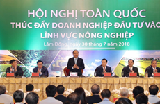Première conférence nationale sur la promotion des investissements dans l'agriculture  