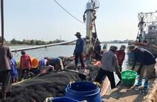 Travailleurs migrants pour la pêche: la Thaïlande coopérera avec les pays voisins