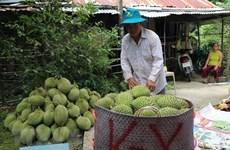 Améliorer la valeur des produits agricoles pour pénétrer le marché européen