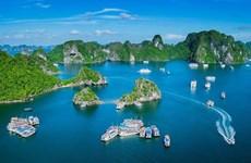 Tourisme maritime du Vietnam: croissance impressionnante