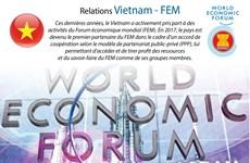 Les relations Vietnam - FEM en infographie