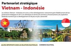 [Infographie] Partenariat stratégique Vietnam - Indonésie