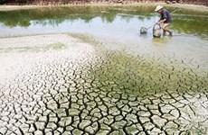 Le Vietnam accueillera un Dialogue de haut rang sur les changements climatiques