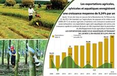[Infographie] Les exportations agricoles enregistrent une croissance moyenne de 9,24% par an