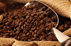 Les exportations nationales de café atteignent plus de 2 milliards de dollars