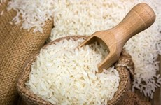 Montée en flèche des exportations vietnamiennes de riz et de café en Indonésie