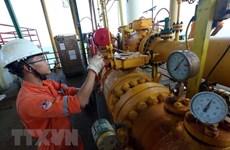 Les IDE contribuent au développement du secteur pétrolier du Vietnam