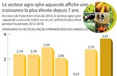 [Infographie] Le secteur agro-sylvi-aquacole affiche une croissance la plus élevée depuis 7 ans