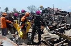 Séisme et tsunami en Indonésie: établir un site web pour rechercher les proches perdus