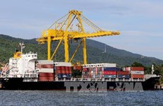 Les efforts de la ville Da Nang pour développer l'économie maritime