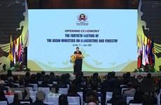 Saisir des opportunités pour promouvoir le secteur agro-sylvicole de l'ASEAN