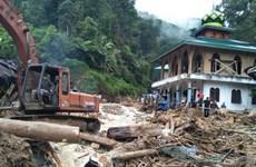 Indonésie : nombre de morts et disparus en hausse après des glissements de terrain