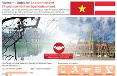 [Infographie] Vietnam - Autriche: Le commerce et l'investissement en épanouissement