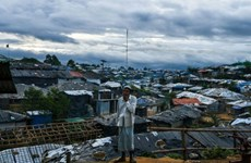 Le Bangladesh et le Myanmar entameront le retour des Rohingyas en novembre