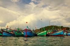 Une délégation du Parlement européen collabore avec Binh Dinh pour lutter contre la pêche INN