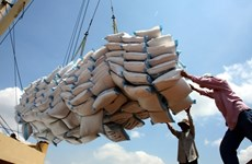 Les exportations du riz évaluées à 5,2 millions de tonnes en dix mois