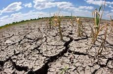 Forum de Hanoi sur l'amélioration de la résilience au changement climatique