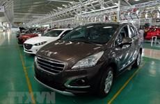 Le marché automobile national en plein développement