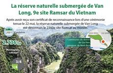 La réserve naturelle submergée de Van Long, 9e site Ramsar du Vietnam