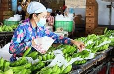 Baisse légère des exportations de fruits et légumes en sept mois