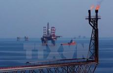 Vietsovpetro contribue à plus de 534 millions de dollars au budget de l'Etat