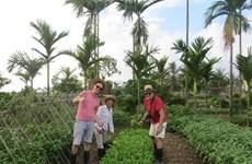 Quang Ninh développe de nouveaux produits pour promouvoir son tourisme
