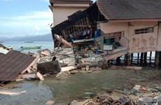 Près de 20 morts et blessés après un puissant séisme dans l'est de l'Indonésie