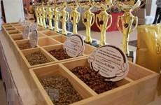 Vietnam – Chine: opportunités de coopération dans la production et la consommation de thé et café