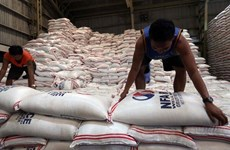 Les Philippines baisseront les importations du riz en 2020