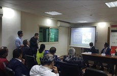 Promouvoir la coopération dans les domaines potentiels entre le Vietnam et l'Egypte