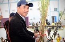 La Thaïlande cherche à développer l'industrie sucrière
