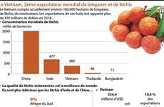 Le Vietnam, 2ème exportateur mondial de longanes et de litchis