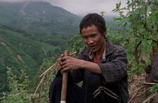 Des films vietnamiens sont présentés au Festival international du film de Singapour