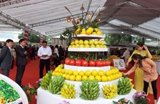 Ouverture du premier Festival de produits agricoles et de villages de métiers de Hanoï