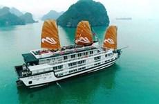 Lancement des bateaux de croisière Paradise Sails sur la baie d'Ha Long
